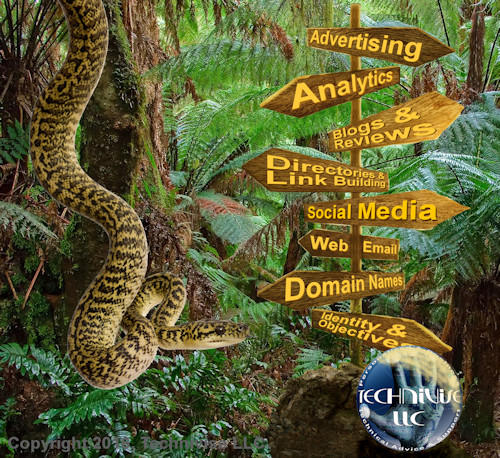 Technivise is your guide to the Internet Jungle!
